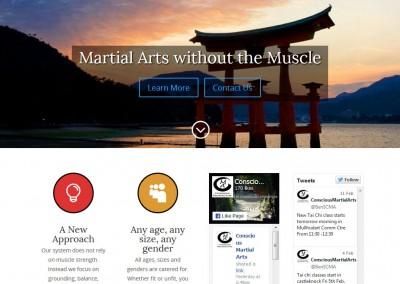 Conscious Martial Arts